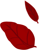 Icone foglie rosse