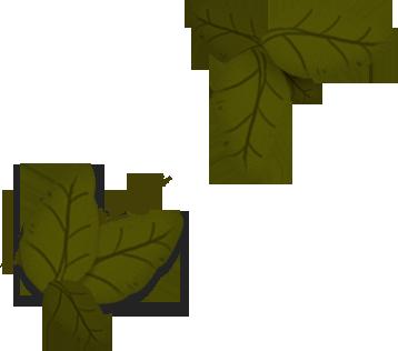 Icone foglie verdi