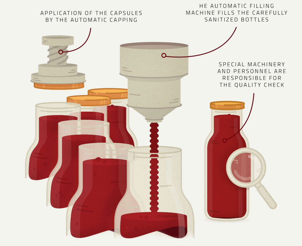 Filling, pasteurization and quality control illustration - Tomato's Production Process