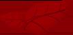 icona foglie rosse