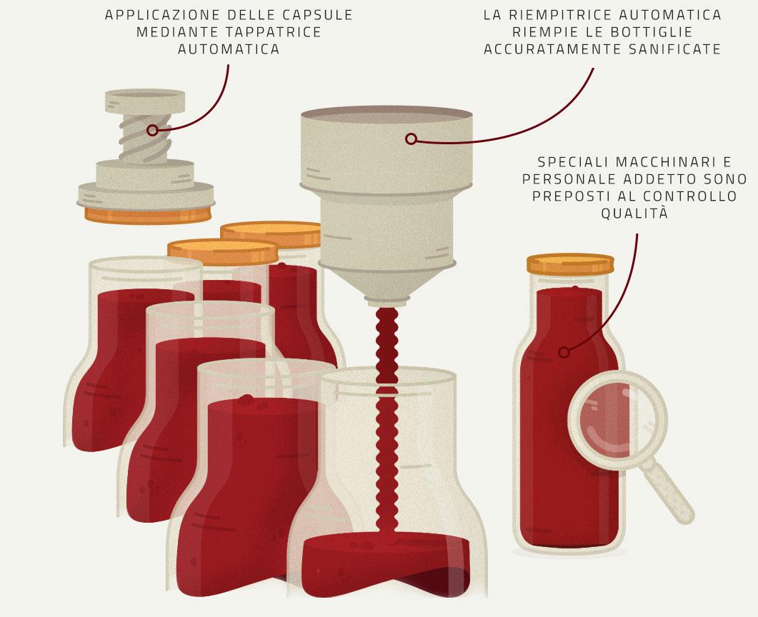Infografica su Riempimento, Pastorizzazione e Controllo Qualità del Pomodoro