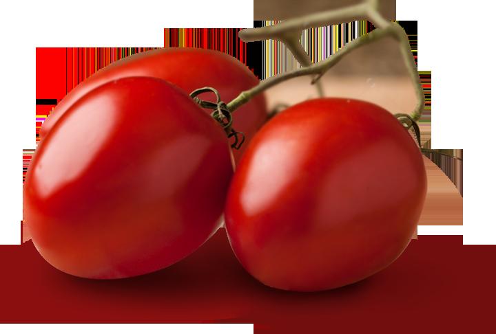 Pomodorino Toscano usato nella produzione dei Prodotti Petti