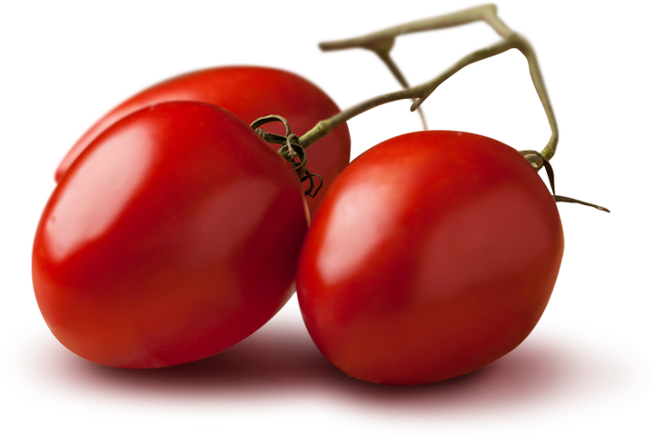 Pomodori Petti datterini 100% toscani