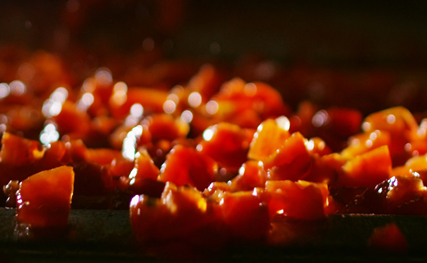 Detail of the tomatoes inside the dicer machine