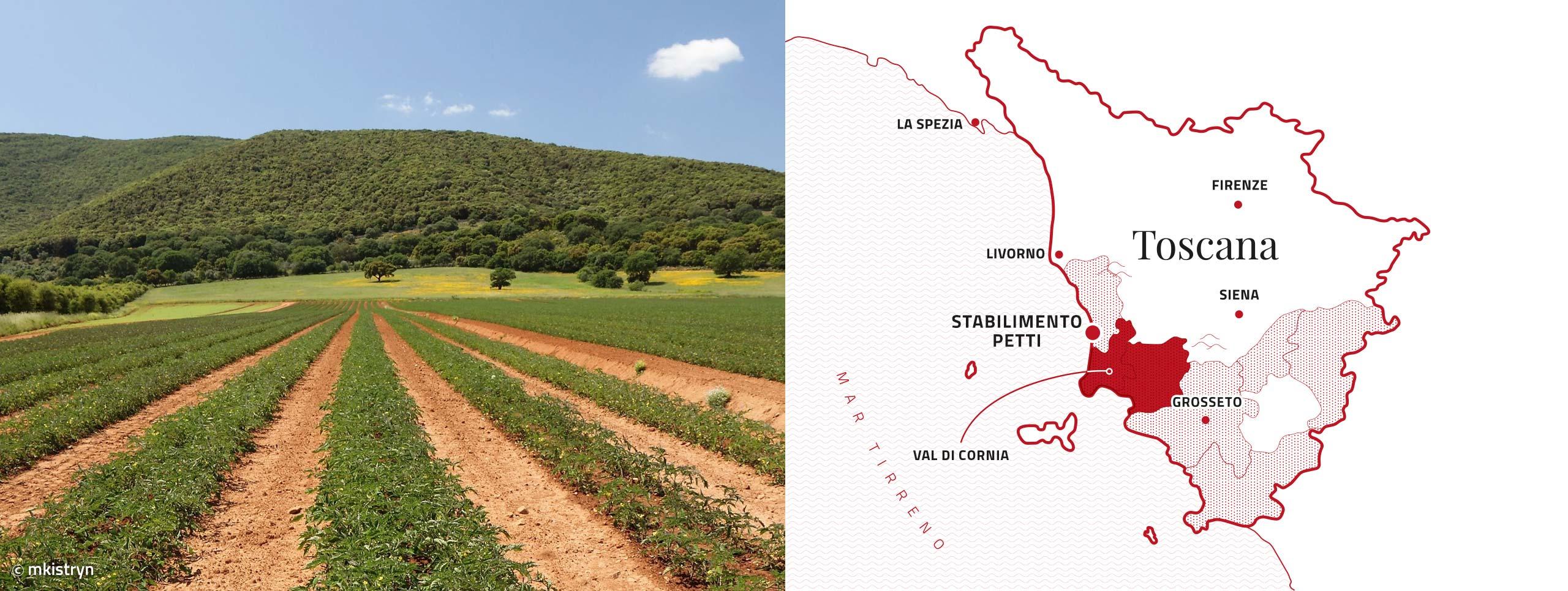 Mappa stabilimenti petti Val di Cornia